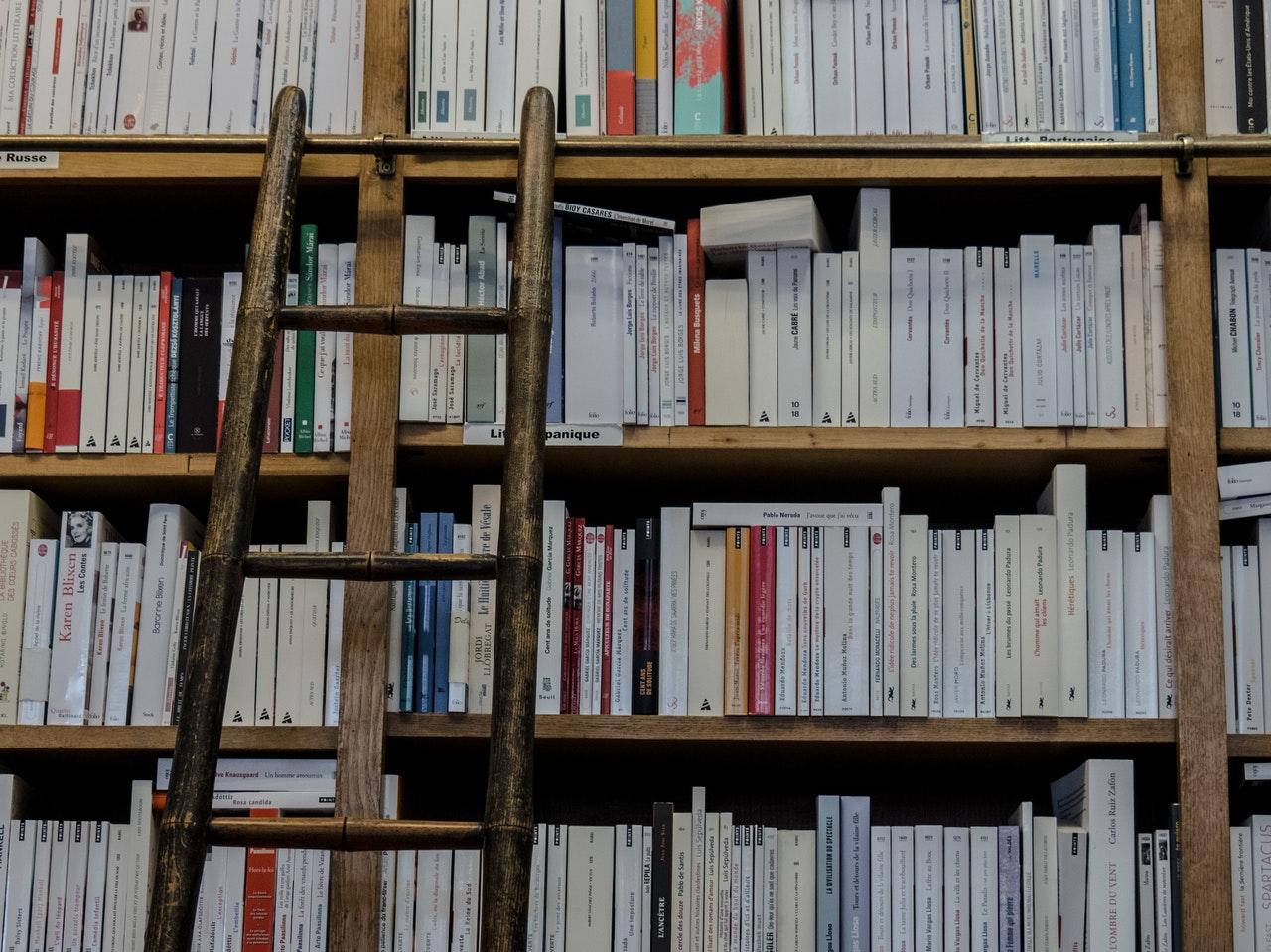 Livrarias segmentadas consolidam uma tendência no mercado editorial